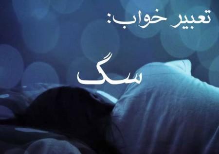 دیدن سگ در خواب , دیدن سگ مرده در خواب , دیدن حمله سگ در خواب